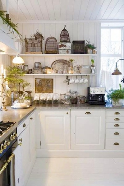 Bird cages, vintage dishes, and greenery are those things that you could display on open shelves in your farmhouse style kitchen.