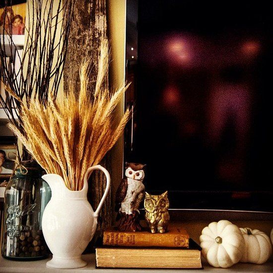 a white jug with wheat is a lovely fall decoration or centerpiece that will add a cozy rustic feel to any space