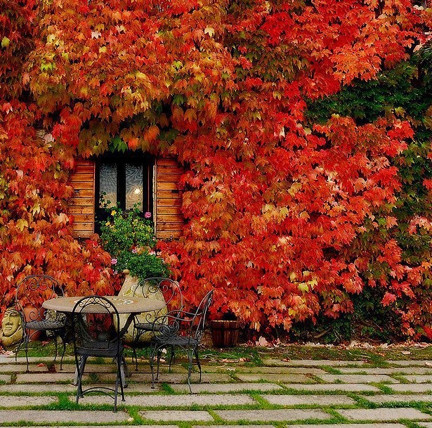40 Nature Inspired Fall Decorating Ideas And Easy Diy Decor: 40 Cozy Fall Patio Decorating Ideas