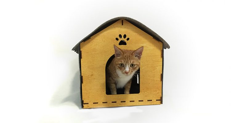 Cozy Indoor Cat House Designed In Wood And Felt