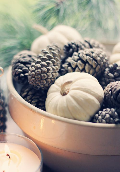 a fall centerpiece of a white bowl, pinecones and white pumpkins is a casual decoration for the fall