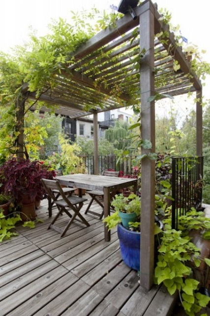 a simple rustic pergola with greenery, blooms and simpel weathered wood furniture