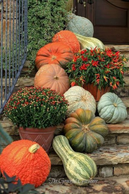 Fall gourds easily come together to make a simple outdoor decoration. Simply arrange any colorful pumpkins, squash, and other gourds on your front steps.