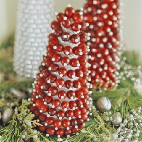 Cranberry Christmas Decor Ideas
