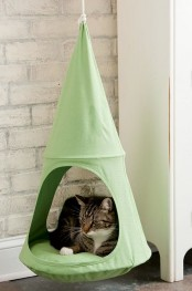 a suspended green cat bed is a comfy idea for your kitty, it will be able to lie in a raised bed and even move a bit