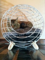 a wire sphere cat bed on wooden legs, with comfy faux fur inside is a very cool and modern option that won't spoil your interior