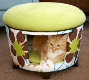 a colorful ottoman that doubles as a cat bed is a nice retreat to hide and is a comfy space to relax inside