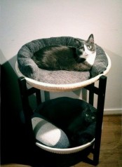 a comfortable cat bunk bed is a stylish piece for two cats, you can DIY one or buy it, even if you have one cat, it will fit