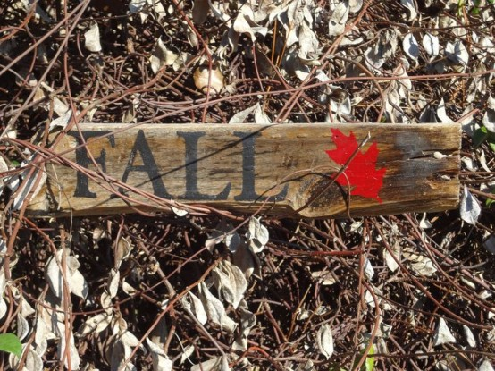 a simple rustic fall sign with a bright red leaf painted on it brings a relaxed feel to any space