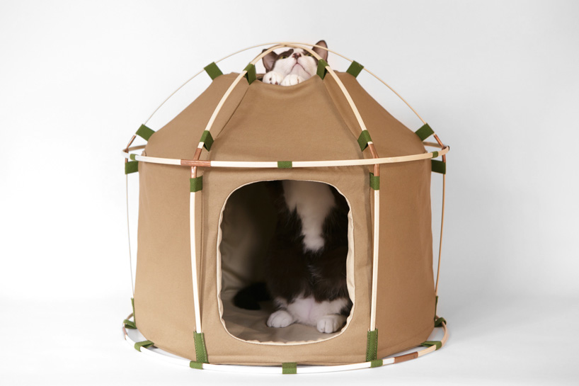 Picture Of cute cat study house of bamboo and cloth  2