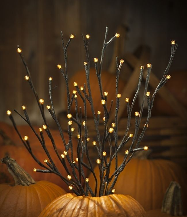 Lighted Twigs Home Decorating: Touches Of Nature: 35 Cute Twig Fall Décor Ideas