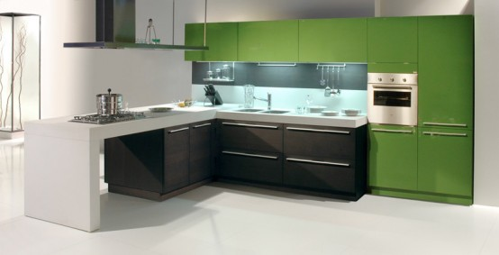dark oak glossy aplle kitchen