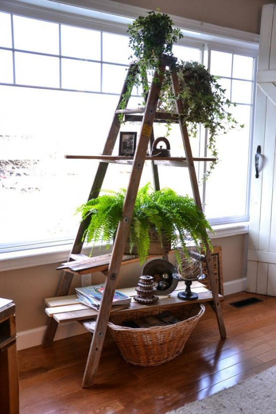 36 Décor Ideas With Ladders: Vintage Charm With Space-Saving ...