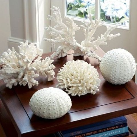corals and sea urchins is a lovely idea to add a seaside touch to the space and you can DIY such decor very fast