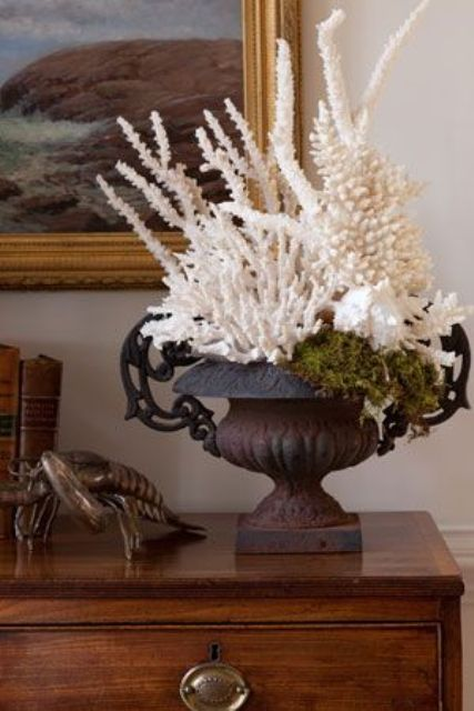 a vintage urn filled with corals and moss is a creative and cool piece to decorate an entryway, a living room or some other room