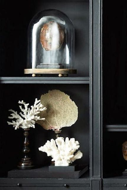 seaside home decor with corals on stands and just in the open shelving unit is a simple and lovely idea