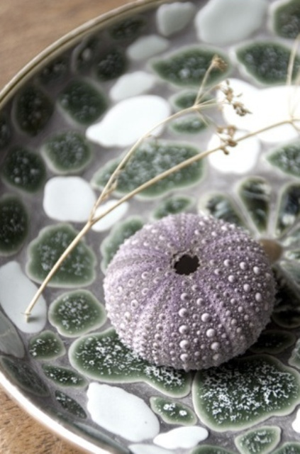 Decorating With Sea Urchins Ideas