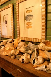 seashells, driftwood and seashell artworks over the mantel will make it look beachy and relaxed