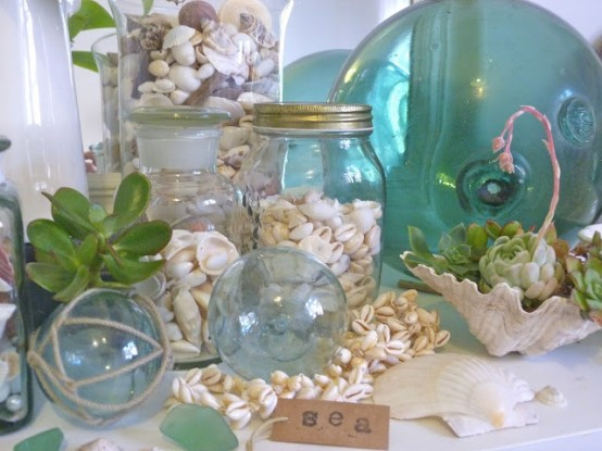 seashells, mussel shells, a seashell succulent pot, succulents and jars with seashells of various kinds feels relaxed
