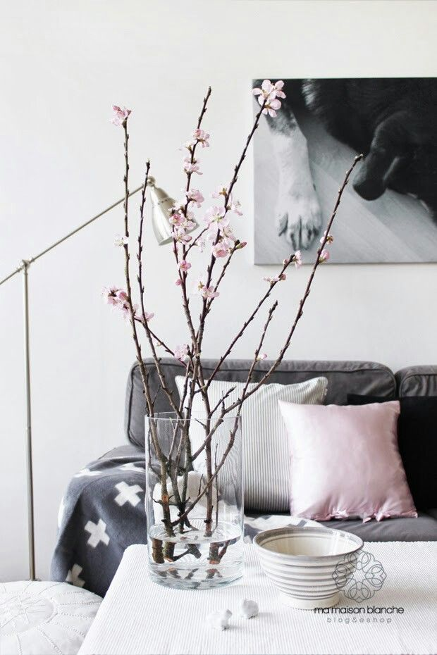 a clear vase with cherry blossom is a stylish decoration even for a minimalist or modern space
