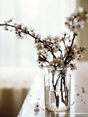 white blossom branches in a clear vase is a chic idea for neutral and cool spring decor