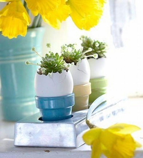 eggs in pastel cups with succulents inside and a bright yellow flower arrangement for Easter