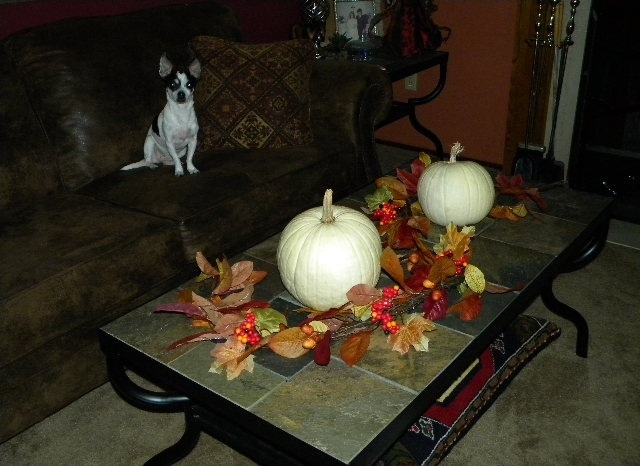 a coffee table with bright fall leaves, berries and white pumpkins here and there is classics