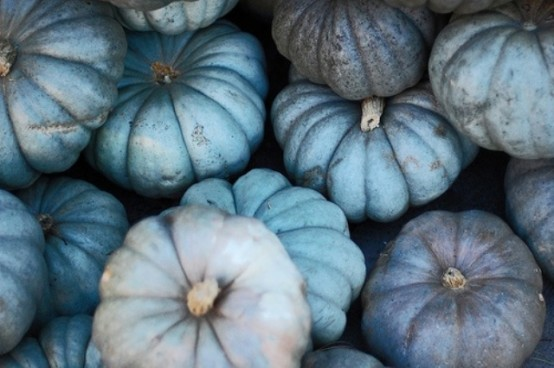 blue, grye and taupe pumpkins with a metallic shine look very cool and very modern, they are easy to DIY