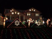 the christmas lights