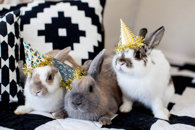 festive rabbits invited for a modern baby shower