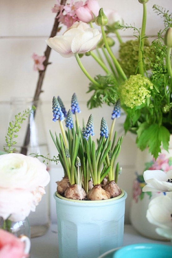 a blue planter with blue hyacinths is a pretty and cool idea to add a spring feel to outdoors or indoors