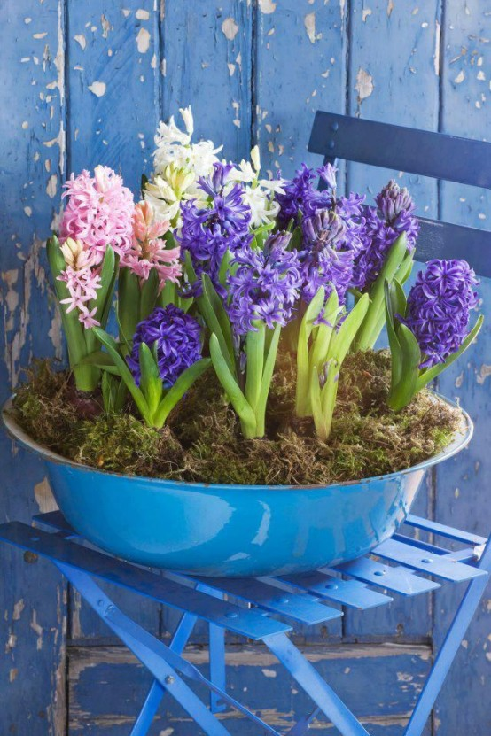 a bright blue galvanized bathtub with white, pink and purple hyacinths and moss is a gorgeous outdoor rustic decoration for spring that will bring much color