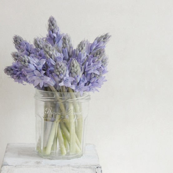 a clear jar with fresh purple blooms is a timeless idea for a rustic or just relaxed space