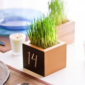 a box with wheatgrass and a table number is a simple and pretty decoration for a wedding in spring
