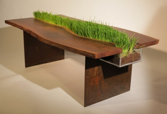 a rich stained wooden table with wheatgrass growing in the center of it is a stylish and bold idea to rock