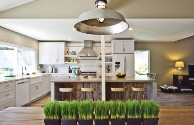 29 Fresh Wheatgrass Home Décor Ideas To Try In Spring