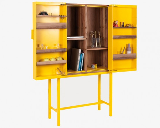 Functional Cabinet To Display Or Hide Things