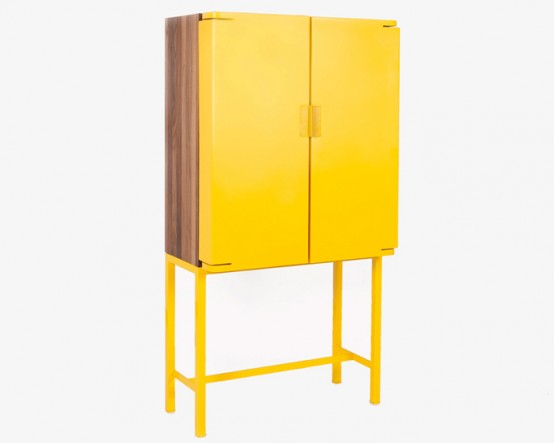 Functional Cabinet To Display Or Hide Things