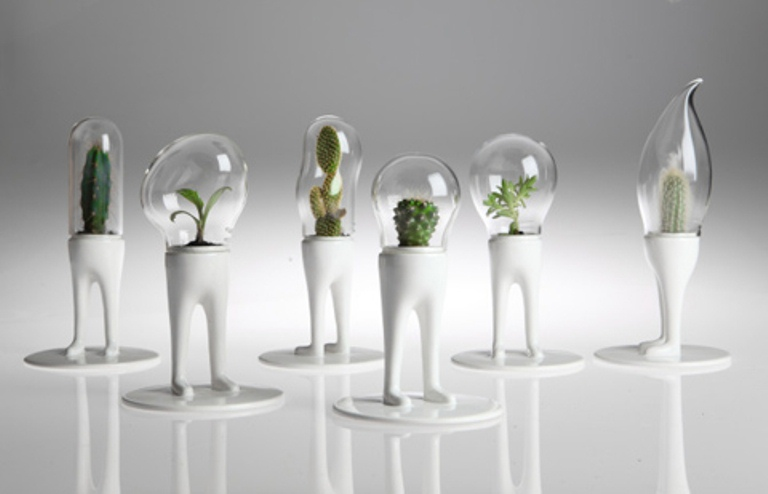 Funky Planters For Cactuses With Domes