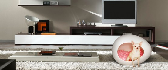 Futuristic Pet Beds