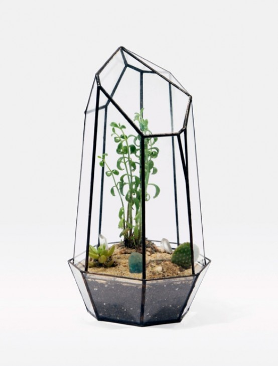 Stylish Glass Terrariums To Grow Green Plants