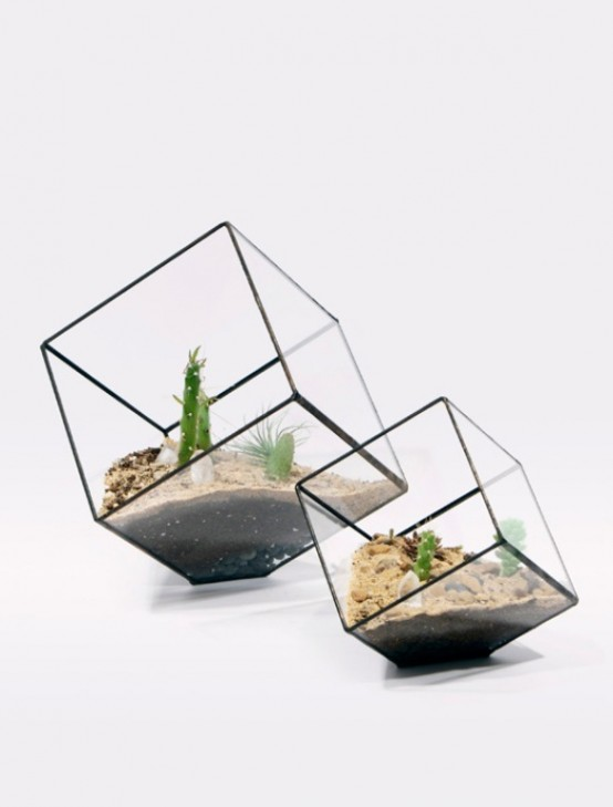 Glass Terrariums To Grow Green Plants