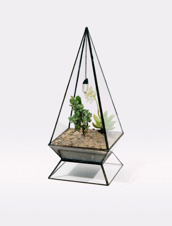 Glass Terrariums To Grow Green Plants