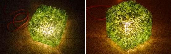 grass on lamp