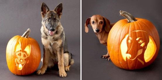 Super cute dog-inspired pumpkin carvings.