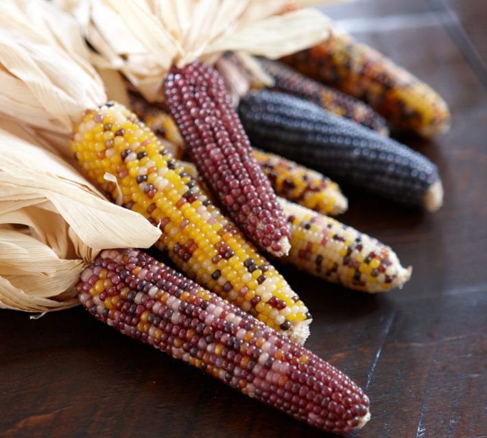 corn cobs with husks are always a good idea for Thanksgiving, they can be hung outdoors instead of a usual wreath