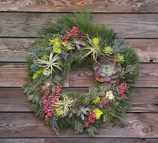 Holiday Wreath With Living Plants