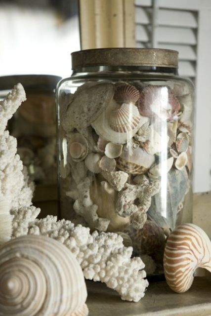 How To Decorate With Seashells  37 Inspiring Ideas