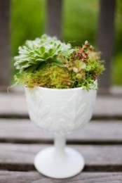 a white textural and patterned bowl with moss and succulents is a stylish decoration to rock at home