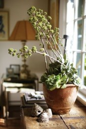 a planter with succulents and tall plants is a stylish idea – that height difference makes the piece look cool